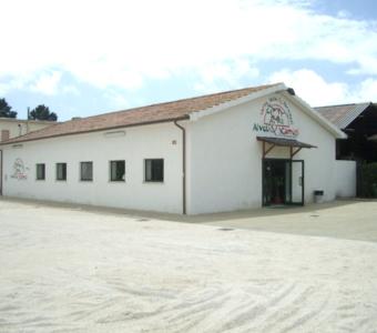 Латина - молочная и магазинная конюшня